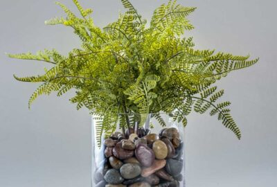 Fern-in-a-stone-glass-base - Home Décor by Ruth Dyer - in the Villages of Florida.